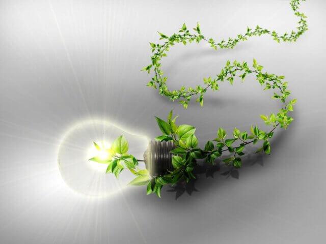Годі нехтувати проблемою накопичення сміття!  Впровадження стратегічного екологічного менеджменту Проектного Бюро «Базис».